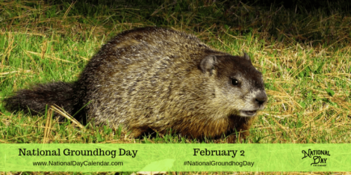 national-groundhog-day-e28093-february-2-768x384