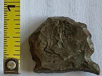 Ancient Scraper